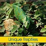 Unique Reptiles 2017: Snakes, Turtles and Saurians (Calvendo Animals)