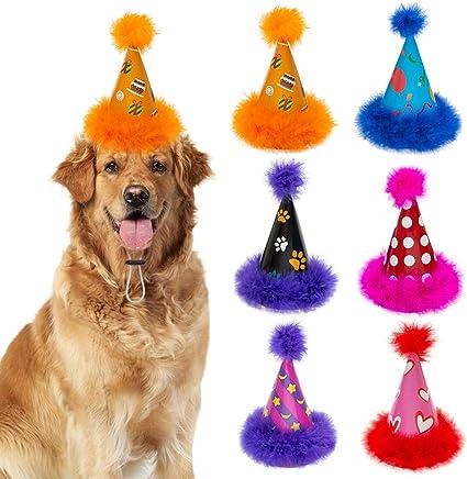 Amazon.com: Sombrero de fiesta para perro de Escenereal, 6 ...