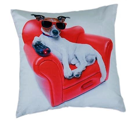 Funda de almohada de Cooler con diseño de perro con gafas ...