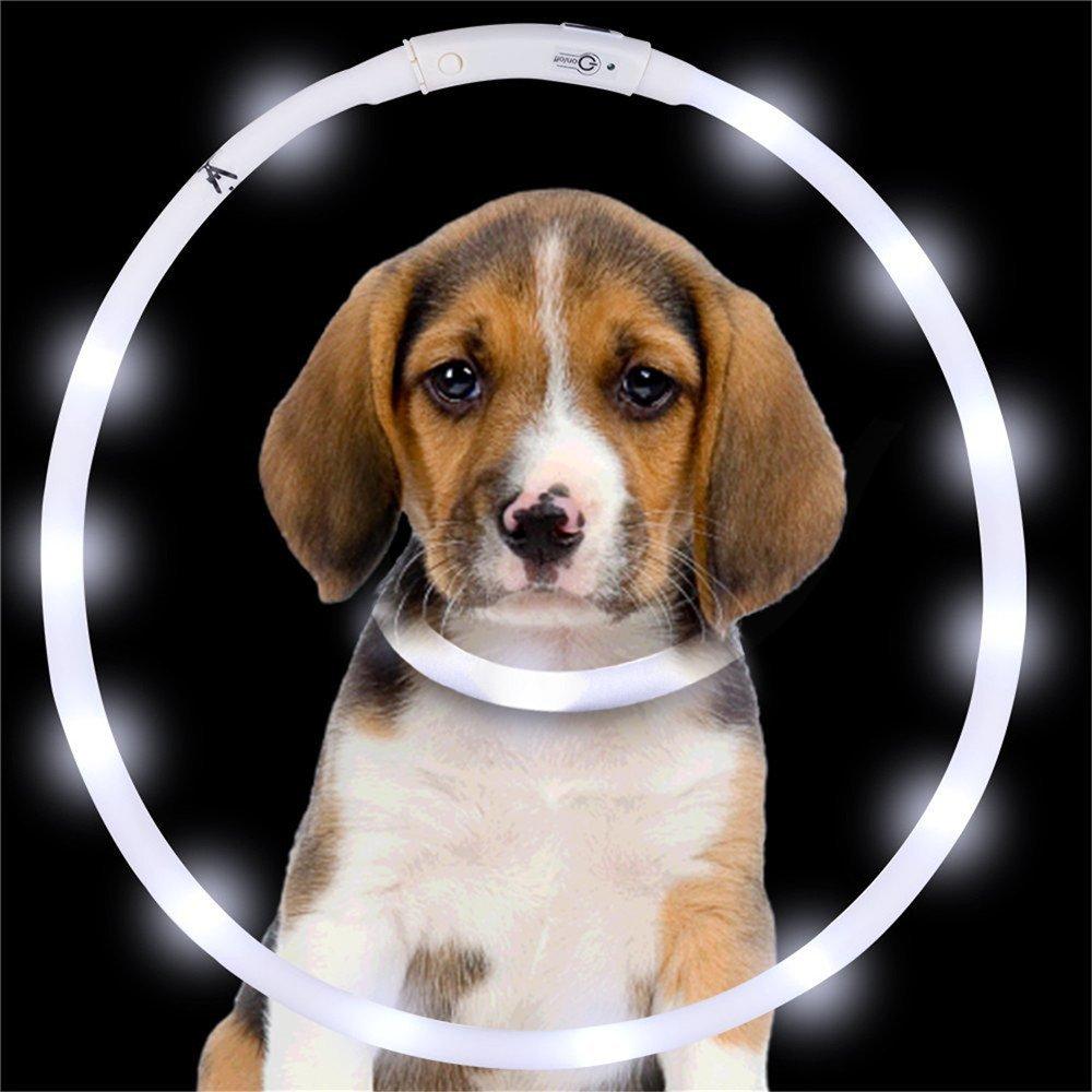Yaojiaju USB Rechargeable LED Luminous Dog Collar Waterproof Adjustable Flashing Glowing Pet Safety Collar White