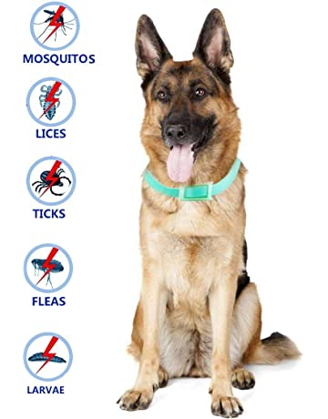 Beste Band El Mejor Collar de garrapatas para Perros y Gatos Pequeños, medianos y Grandes
