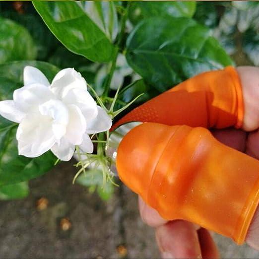 mementoy Cuchillo de Pulgar de Silicona para jardín, Separador Cuchillo de Dedo Cosecha de Plantas Cuchillo Planta Jardinería Regalos Recortar Jardín Herramientas de jardinería Vegetal 2.09in Show: Amazon.es: Hogar