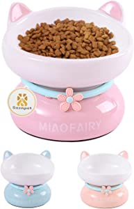Sasapet Cat Bowl, Ceramic Tilted Elevated Cat Bowl Raised Food and Water Bowls Dish with Stand, Big Head Bowl High-Capacity, Dishwasher Microwave Safe, Lead Cadmium Free for Cats and Small Dogs(Pink)