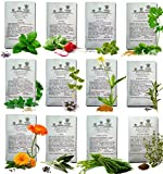 bush beans coupon - HERBS SEEDS AMERICAN GROWN DOUBLE SIZE Quantity Heirloom Culinary Germinate-Ready Non Hybrid Starting Kit For Planting Perennial Organic Home Herb Garden. Gardening Zone 3 to 11 plus MARKERS by Pumene