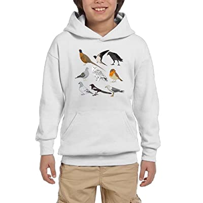 GLSEY Many Birds Coming Youth Soft Pullovers Hooded Sweatshirts Long Sleeve