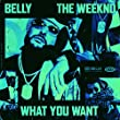 What You Want [Clean] [feat. The Weeknd]