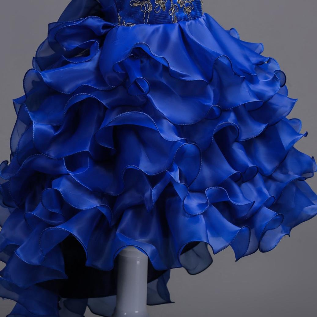 Toddler Girl Ruffle Lace Layered Princess Dress Kid Tulle Pageant Gown Party Wedding Christening