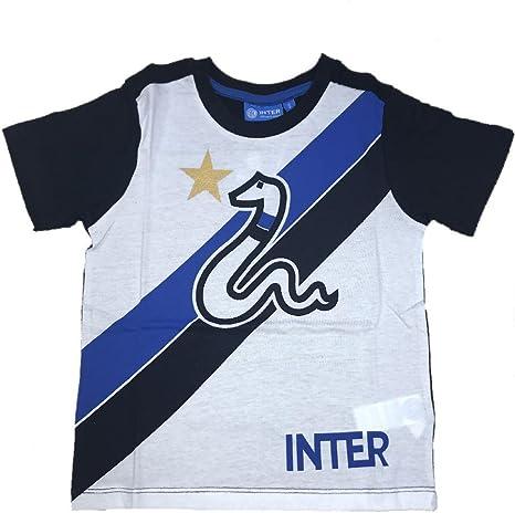 Camiseta del F.C. Internacional Producto Oficial niño Inter Camiseta (4 años (S)): Amazon.es: Deportes y aire libre