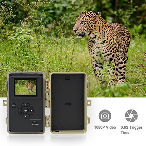 DIGITNOW Trail Camera 16MP 1080P HD Waterproof, Wildlife Hunting Scouting Game Camera with 40Pcs IR LED Infrared Night Vision Up to 65FT /20M, Surveillance Camera 130° Wide Angle 120° Detection by DIGITNOW (Image #5)