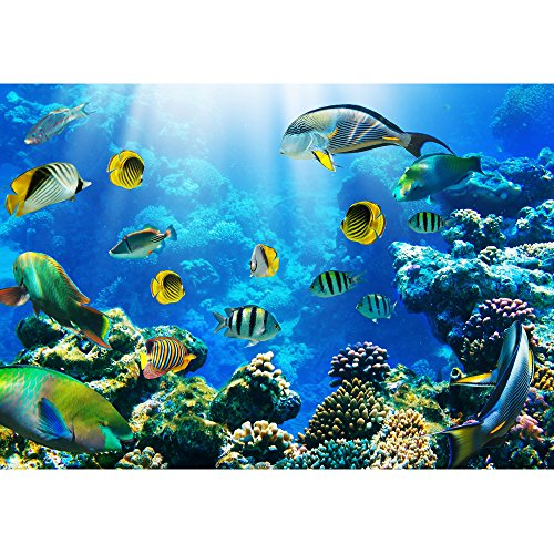 wall26 - Photo of a Tropical Fish on a Coral Reef - Removable Wall Mural   Self-adhesive Large Wallpaper - 100x144 inches by wall26 (Image #1)