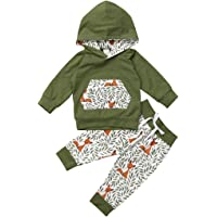 Kleinkind Baby Junge Mädchen Baumwolle Outfit Set für 0-24 Monate Langarm Rose Hoodie Floral Lange Hose Stirnband 3 Bilder