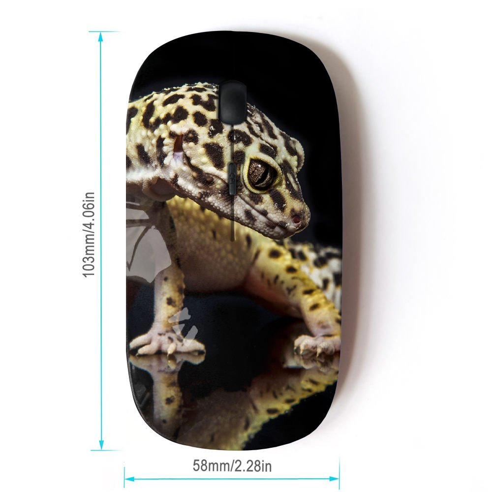 Amazon.com: STPlus Gecko Lizard Animal 2.4 GHz Wireless ...