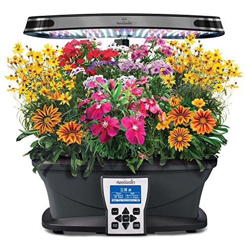 61ndXYY%2BGoL - Miracle-Gro AeroGarden Mountain Meadows Flower Seed Pod Kit