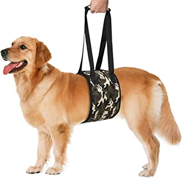 Arnés de soporte para mascota con soporte para perros con soporte ...