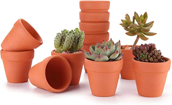 T4U 3 Inch Terracotta Clay Pots Pack of 12 - Mini Hand Craft Nursery Plant  Pot Succulent Cactus DIY Pottery Planter Home Garden Windowsill Decoration  ...