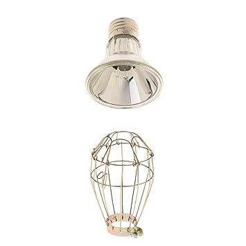 Homyl Metall E27 Lampenschirm Schutzkorb mit Wärmelampe für ...