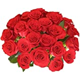 TIED RIBBONS Best gift for your loved ones Bunch Of 21 Red Roses