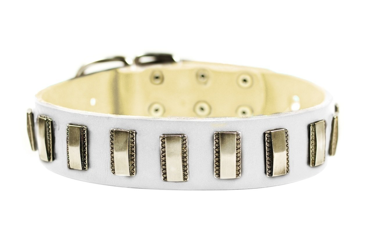 Dean & Tyler  Silver Fire Leather Dog Collar with Strong Nickel Plates, 24 by 1-1 2-Inch, Fits Neck 22 to 26-Inch, White