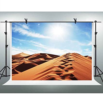 Amazon com : FH 7x5ft Desert Landscape Backdrop Sunshine Blue Sky