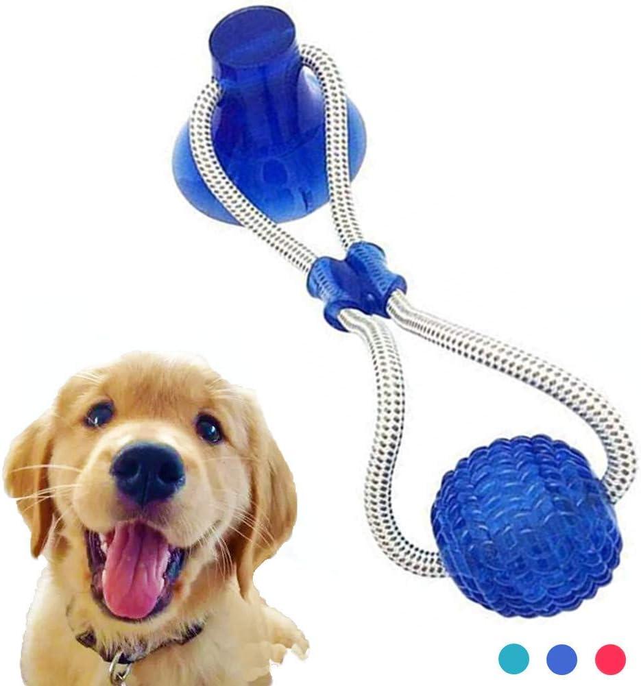 Pet Molar Bite Toy Autoejecutable Pelota Azul Nifogo Juguete de Mascotas de Bola de mordedura de Molar Pelota para Perro Cuerdas Juguetes para Perros Resistant