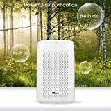 amzdeal Dehumidifier Small Dehumidifier for Bedroom Bathroom Basement 215 sq ft Smart Dehumidifier Quiet Portable 700ml Capacity and Auto Off to Remove Damp, Mold, Moisture