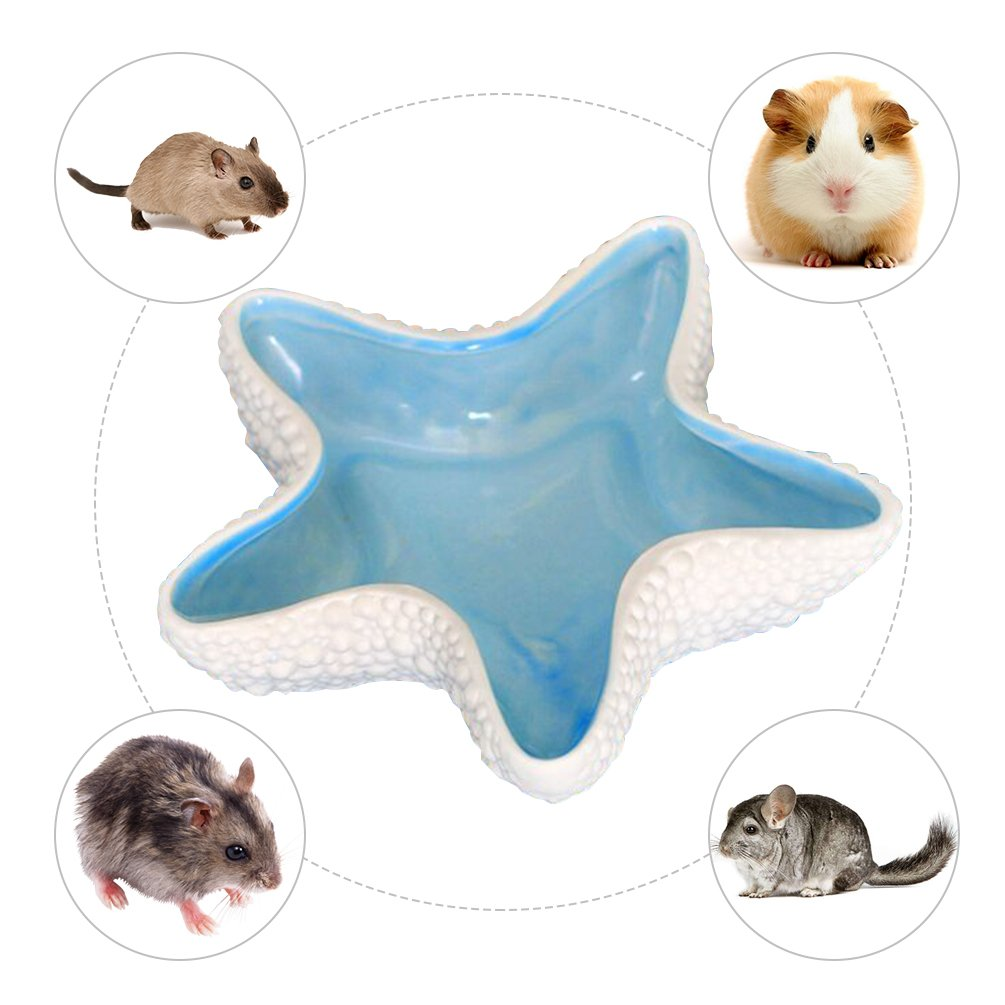Petacc Pet Food Bowl Ceramic Hamster Food Feeder Pet Water Container, Suitable for Guinea Pig, Hamster and Hedgehog, Blue