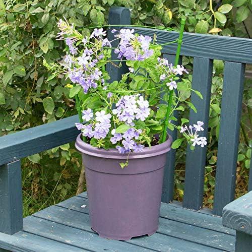 Huaheng Stütze für Kletterpflanzen, Blumenständer mit 3 verstellbaren Ringen, stabil für Garten
