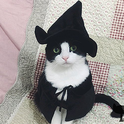 Cute Hooded Cloak Witch / Wizard Halloween Holiday Costume for Small Dogs & Cat Kitten, Cat Costume