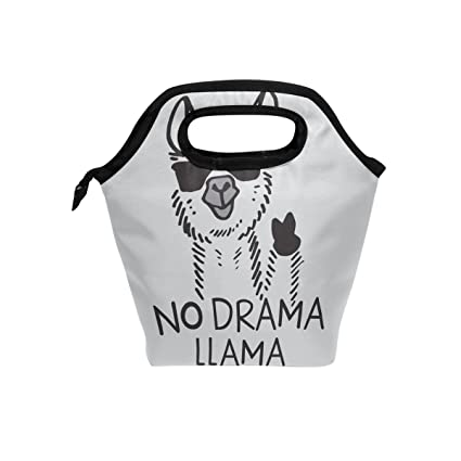 f6befa61e8f9 Amazon.com - Handysome No Drama Llama Food Container Lunch Bag ...