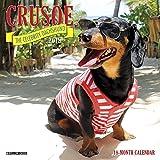 Crusoe the Celebrity Dachshund Mini 2019 Wall Calendar (Dog Breed Calendar)
