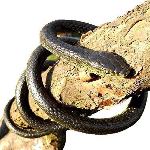 52 Inches Black Mamba Life Like Snake (Life Like Snakes)