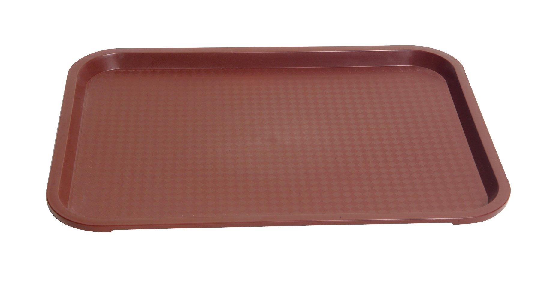 United Scientific LTRAY1 Polypropylene Flat Laboratory Tray, 15'' L x 0.8'' W x 5'' H (Pack of 10)