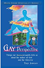 Gay Perspective: Things our [homo]sexuality tells us about the nature of God and the Universe Paperback