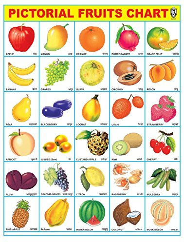 IBD Pre-School Toddler's Educational Fruit Chart PVC Laminated Single Side Poster Wall Chart ()