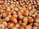 EFO Wooden Nutcracker Mushroom Nut Cracker Tool