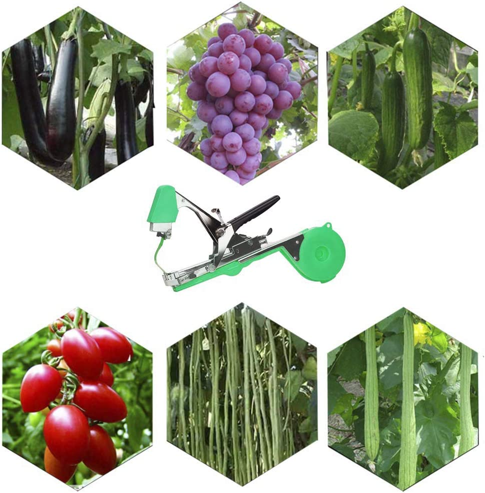 Amazon.com : EKOHOME Plant Tying Machine, Gardening Tapetool Tapener Gun with 10 Rolls of Tape and 1 Box of Staple for Vegetable, Grape, Tomato, Cucumber, Pepper and Flower (Green) : Garden & Outdoor