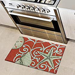Homefires Accents Neptune Indoor Rug, 22 by 34-Inch