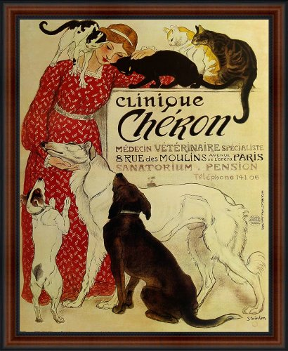 Clinique Cheron by Theophile Steinlen c. 1905. Framed Vintage Veterinary Medicine & Hotel Reproduction