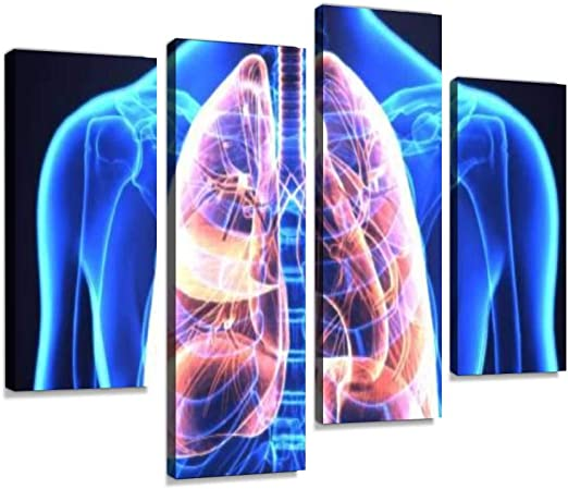 Canvas Wall Art Painting Pictures 3d Human Body Lungs Human Body Part Modern Artwork Framed Posters For Living Room Ready To Hang Home Decor 4panel Amazon Ca Home Kitchen