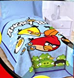 Angry Birds Blanket Twin / Full 62 X 90 Micro Raschel ~ Over Sized Throw ~ Super Soft