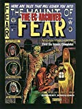 The EC Archives: The Haunt of Fear Volume 1 by Various (2015-08-11)