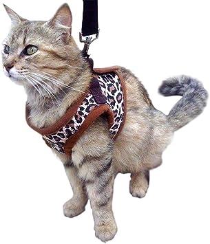 Gato Arnés Chaleco de – perfecto para gato, pequeño gato o perro ...