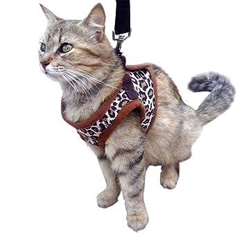 Gato Arnés Chaleco de – perfecto para gato, pequeño gato o perro de juguete para