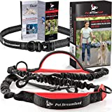 Pet Dreamland • Retractable Hands-Free Dog Leash - Improved Running Leash With 3 Bungee Cords & Dual Padded Handles & Adjustable Waist Belt - Training Leash