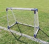 The Zone Hockey Goals