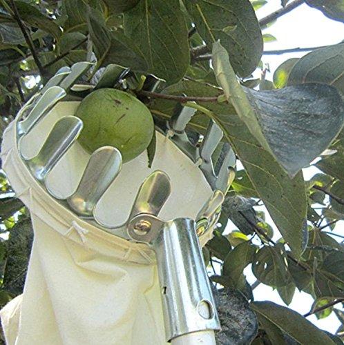 Metal Fruit Picker Convenient Fabric Orchard Garden Apple Pear High Tree peach ()