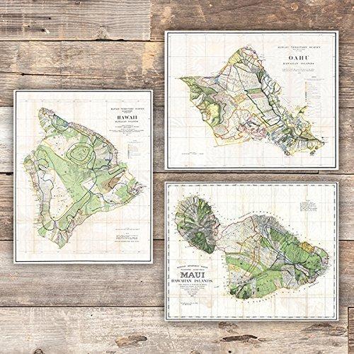 Vintage Hawaii Survey Maps Art Prints (Set of 3) - Unframed - 8x10s