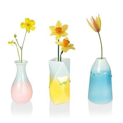 Amazon Flower Bud Vase Sets Solofish Rainbow Series Ceramic