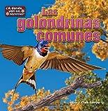 Las Golondrinas Comunes, J. Clark Sawyer, 1627244565