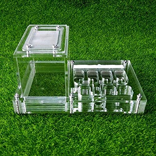 KDGPUM New Design DIY with Feeding Area Ant Nest Ant Farm Acrylic Villa Pet Mania for House Ants Insect Ant Workshop   01